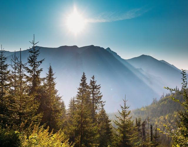 Sezon letni w górach