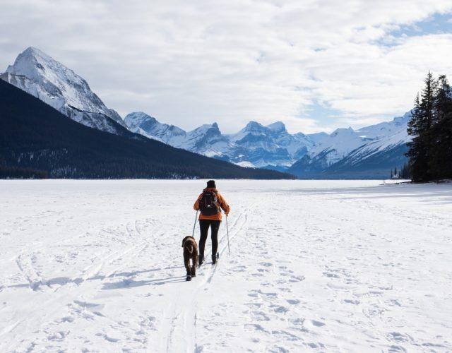 Rodzaje narciarstwa, narciarstwo biegowe